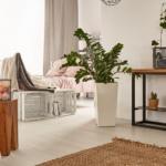 Краткосрочная аренда жилья в Испании: актуальные правила бизнеса